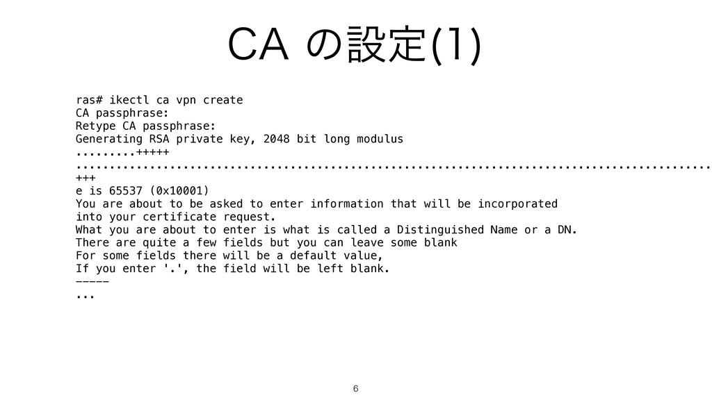 """$""""ͷઃఆ   ras# ikectl ca vpn create CA passphra..."""