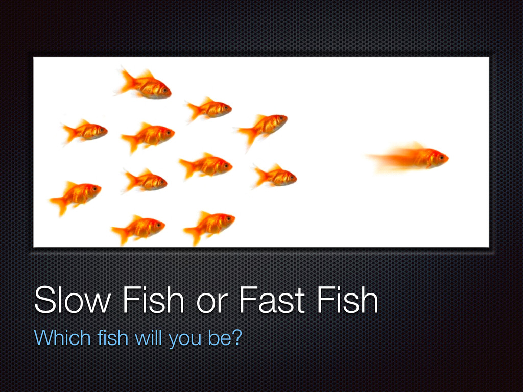 Text Slow Fish or Fast Fish Which fish will you ...