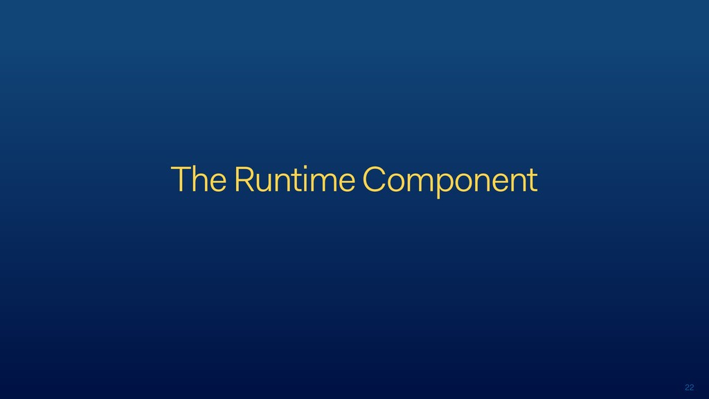 22 The Runtime Component