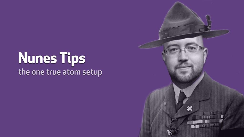 Nunes Tips the one true atom setup