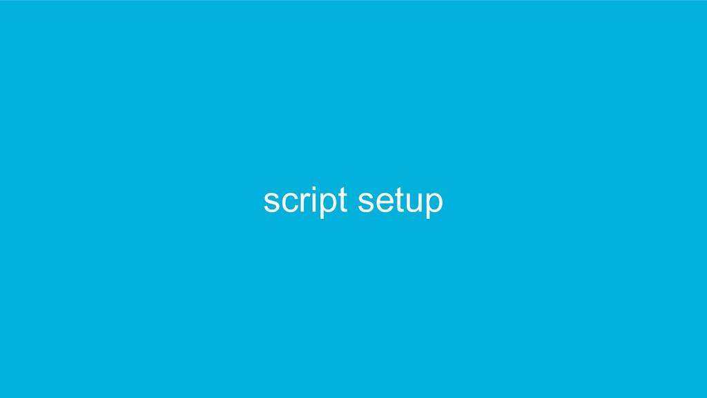 script setup