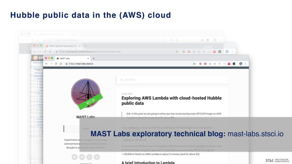MAST Labs exploratory technical blog: mast-labs...