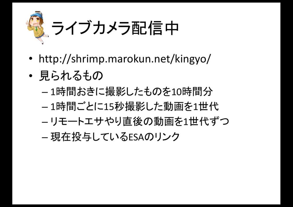 ライブカメラ配信中 • http://shrimp.marokun.net/kingyo/ •...