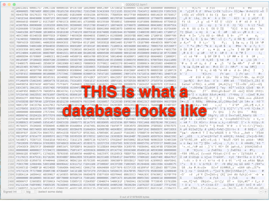 THIS is what a database looks like