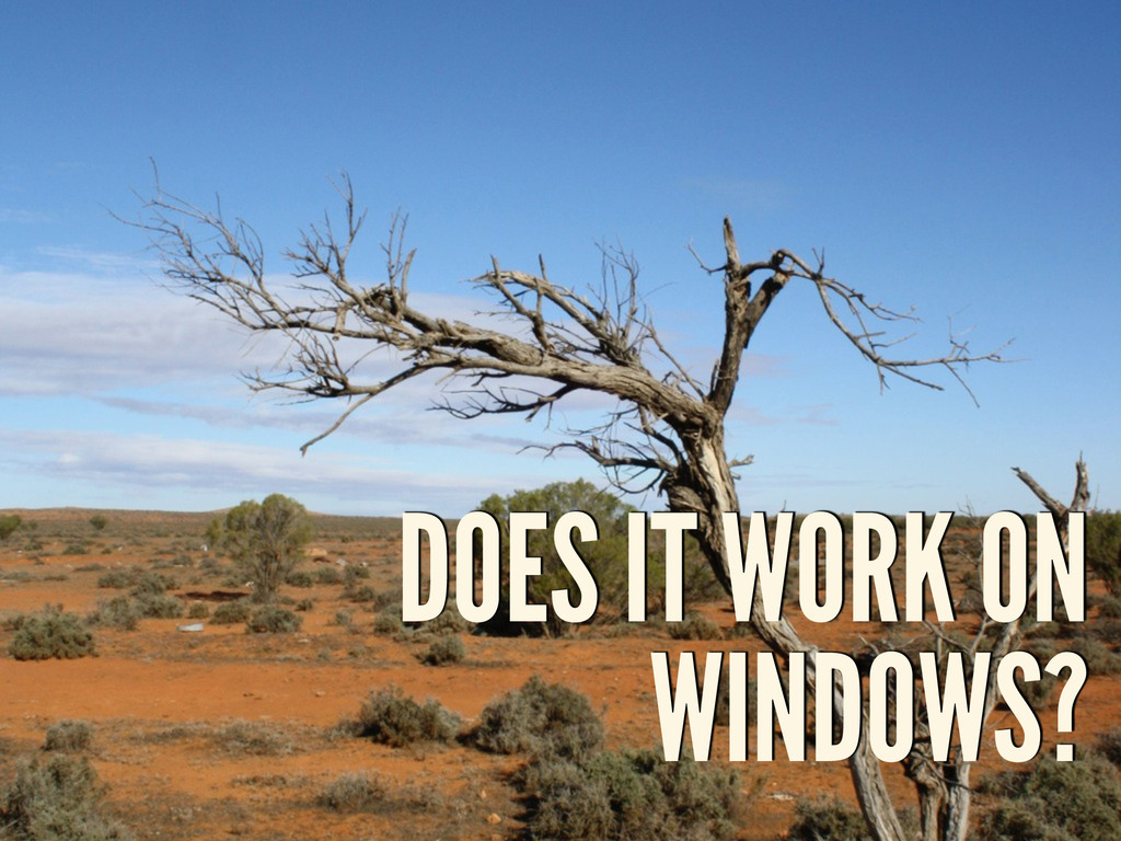 DOES IT WORK ON WINDOWS?