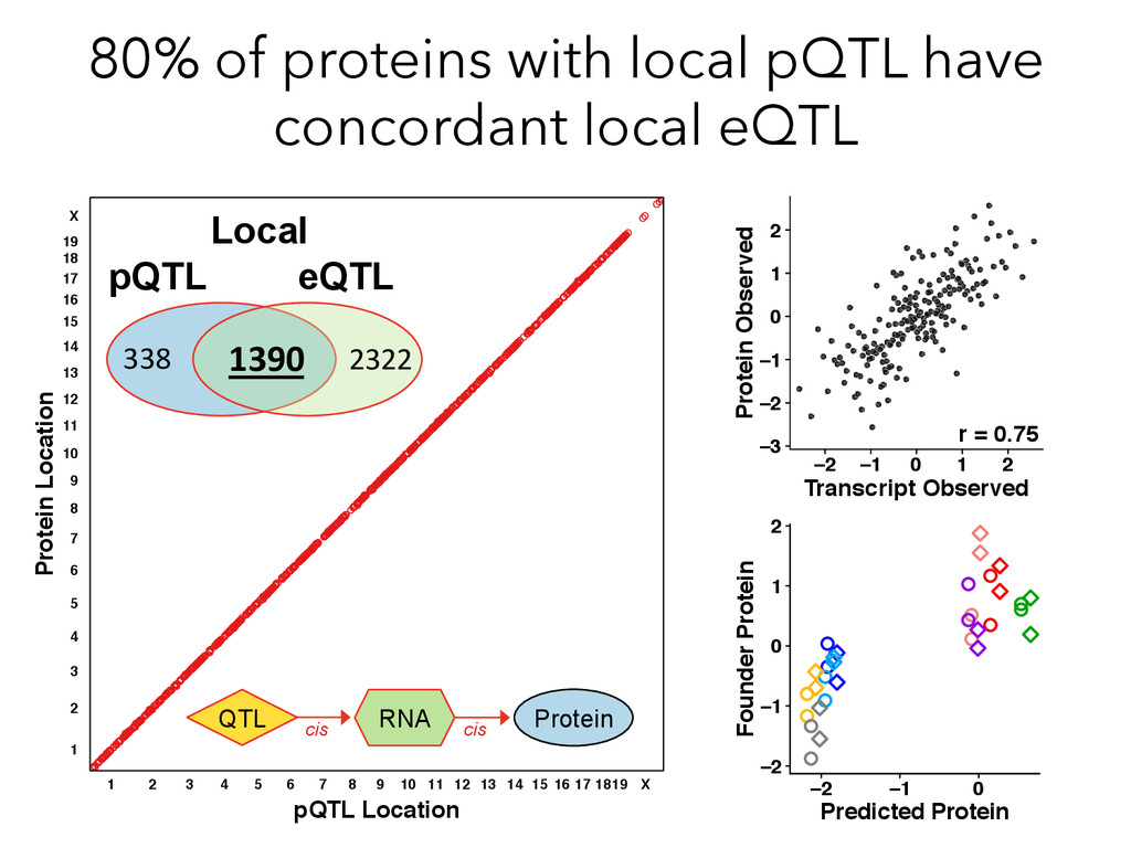 80% of proteins with local pQTL have concordant...