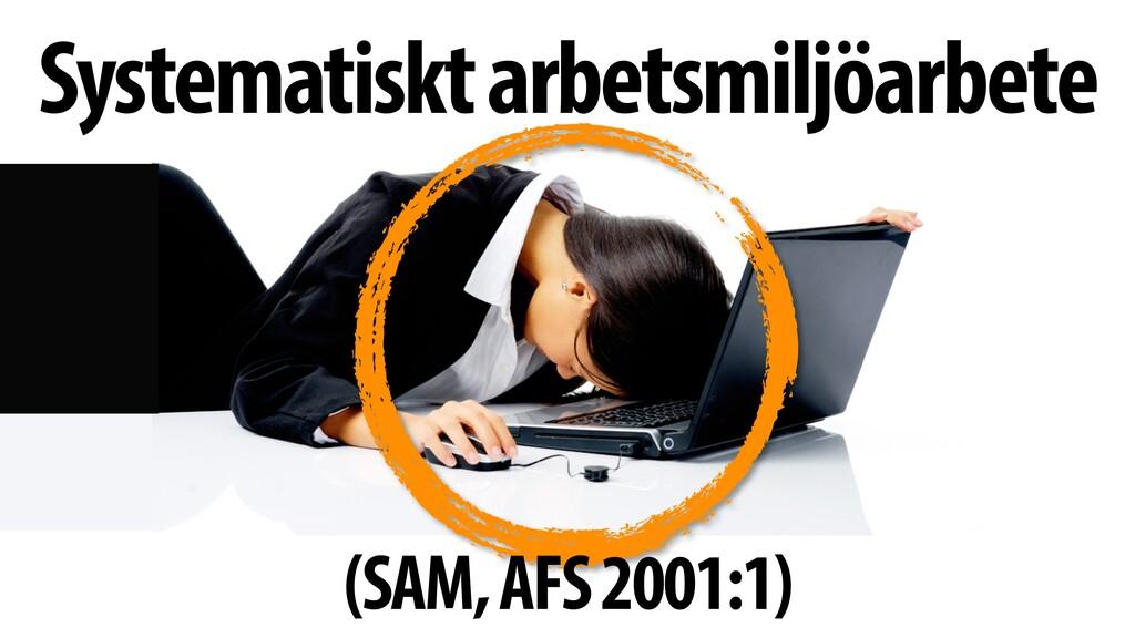 Systematiskt arbetsmiljöarbete (SAM, AFS 2001:1)