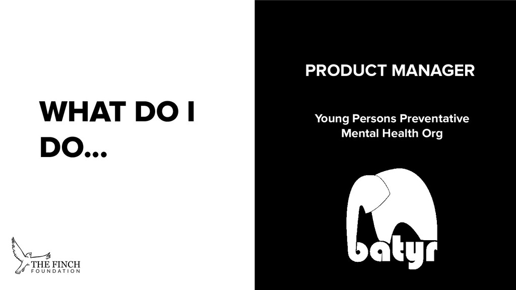 WHAT DO I DO... PRODUCT MANAGER Young Persons P...
