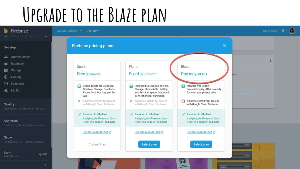 Upgrade to the Blaze plan
