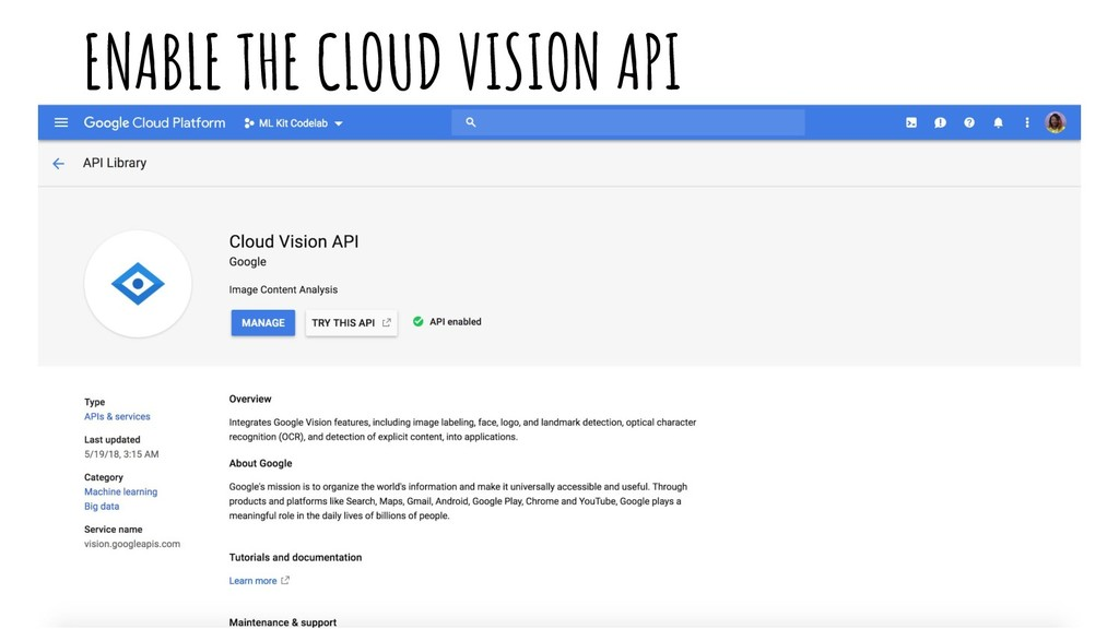ENABLE THE CLOUD VISION API