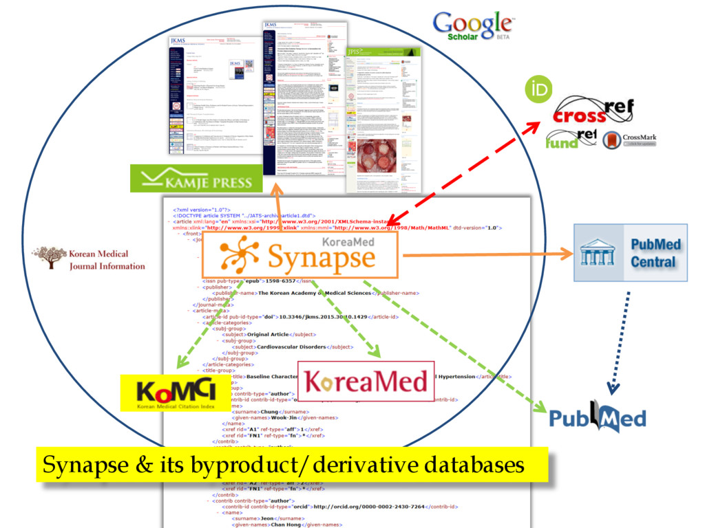 Synapse & its byproduct/derivative databases