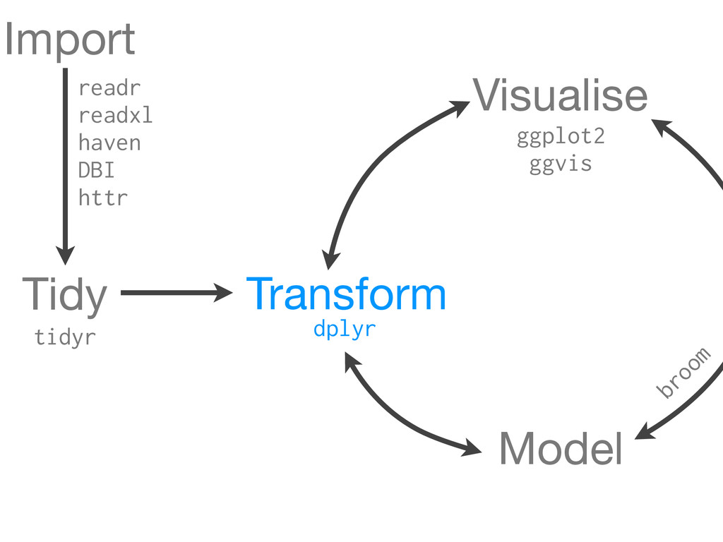 Transform Visualise Model tidyr dplyr Tidy ggpl...