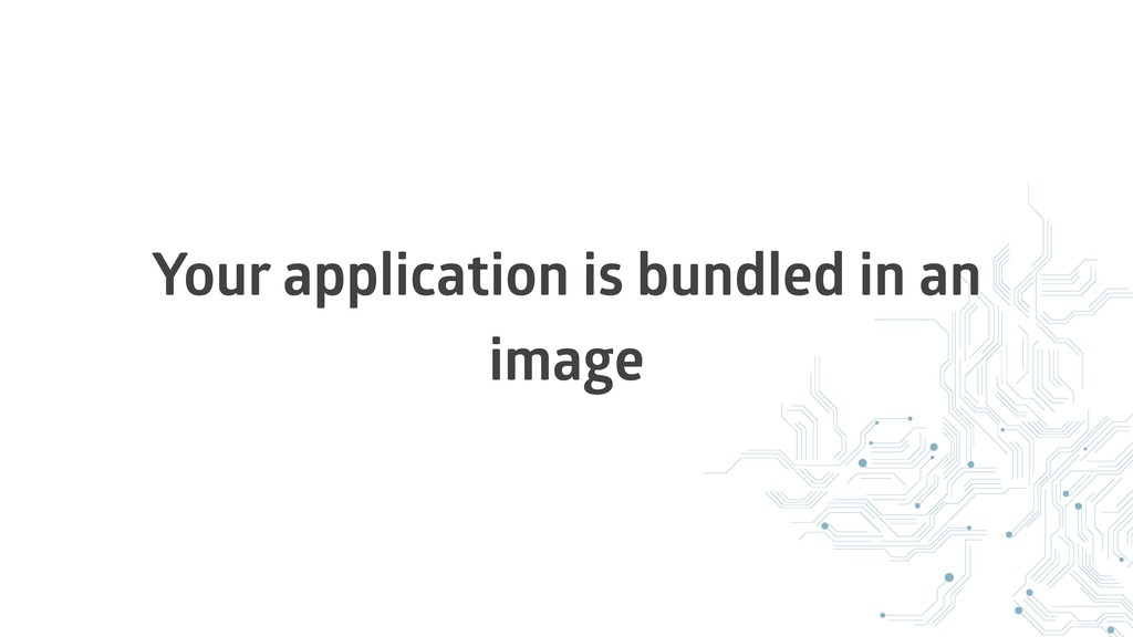 Your application is bundled in an image