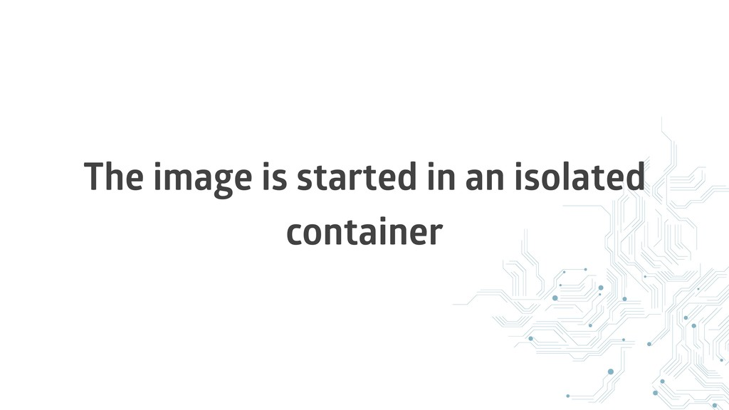 The image is started in an isolated container