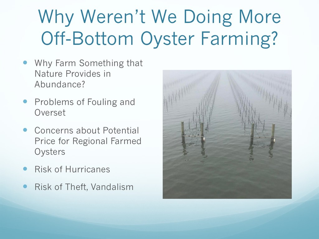Why Weren't We Doing More Off-Bottom Oyster Far...