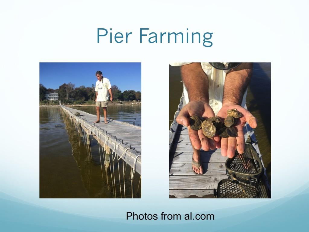 Pier Farming Photos from al.com