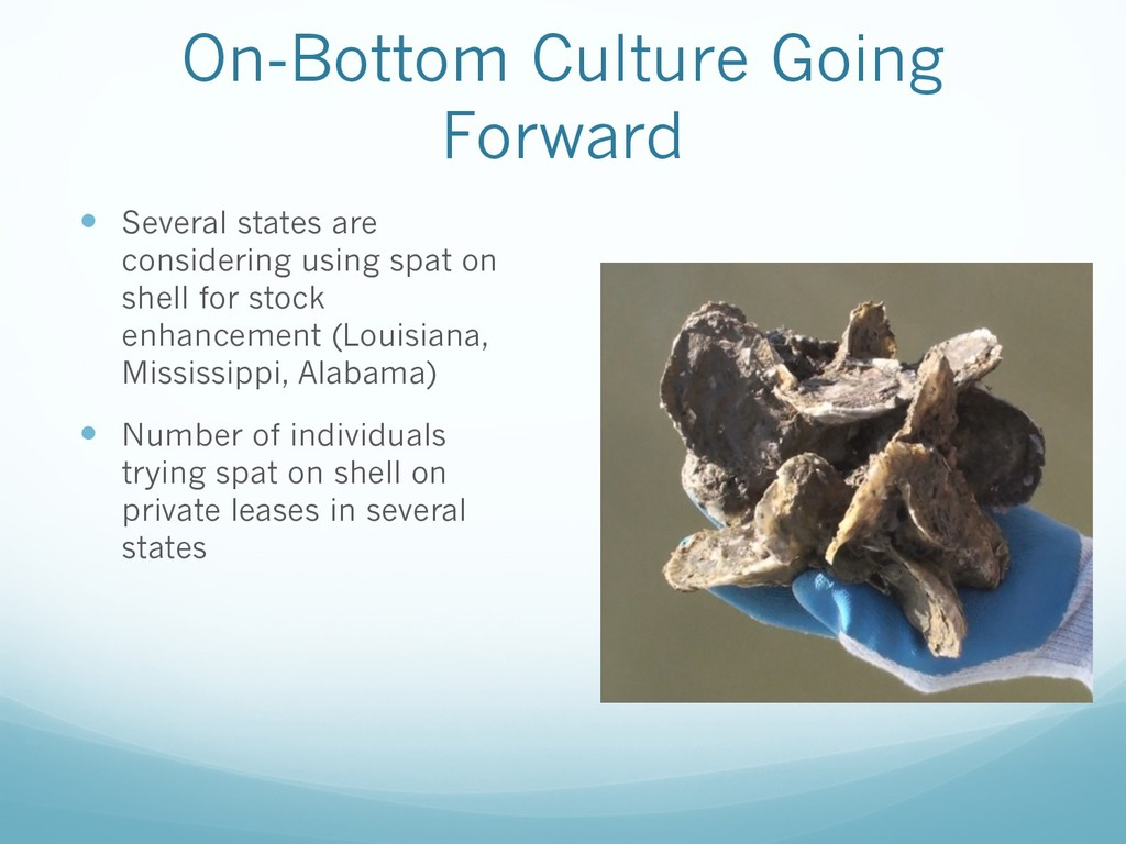On-Bottom Culture Going Forward — Several state...