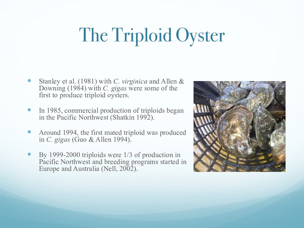 The Triploid Oyster — Stanley et al. (1981) wit...