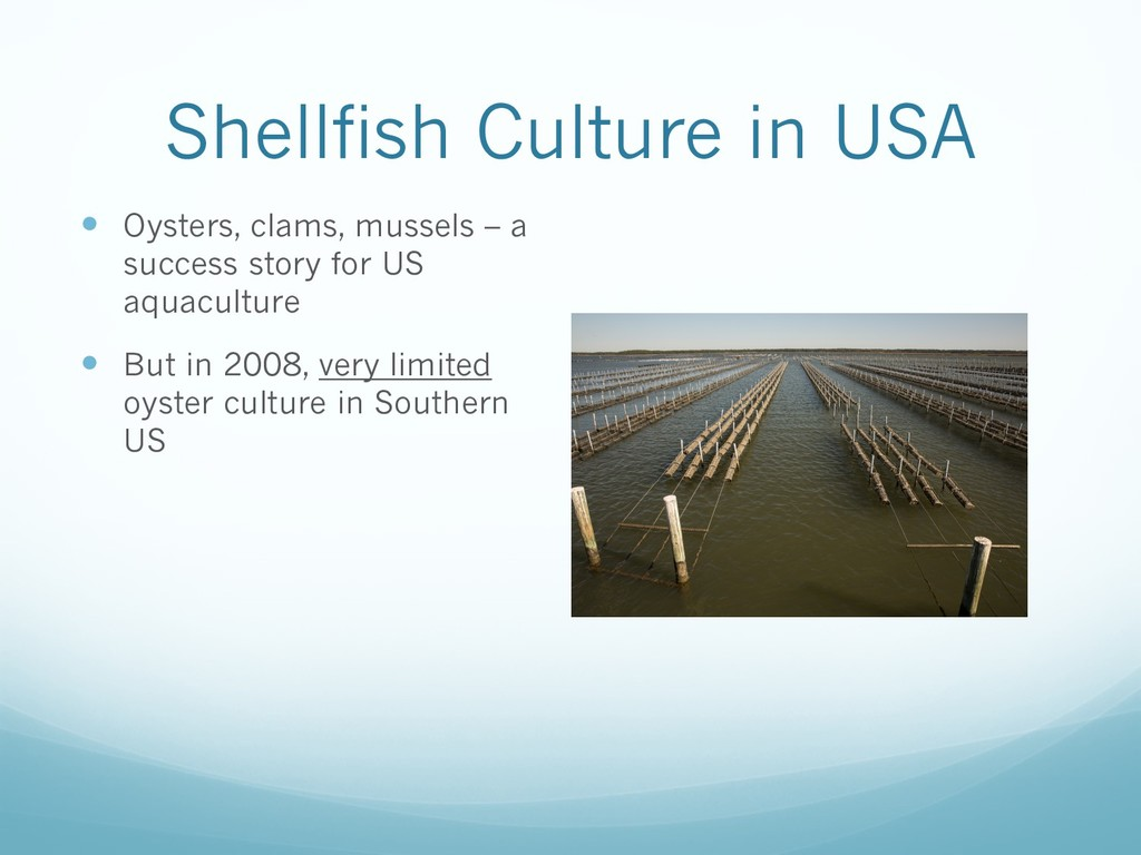 Shellfish Culture in USA — Oysters, clams, muss...