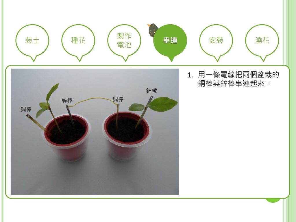 裝土 種花 製作 電池 串連 安裝 澆花 1. 用一條電線把兩個盆栽的 銅棒與鋅棒串連起來。 ...