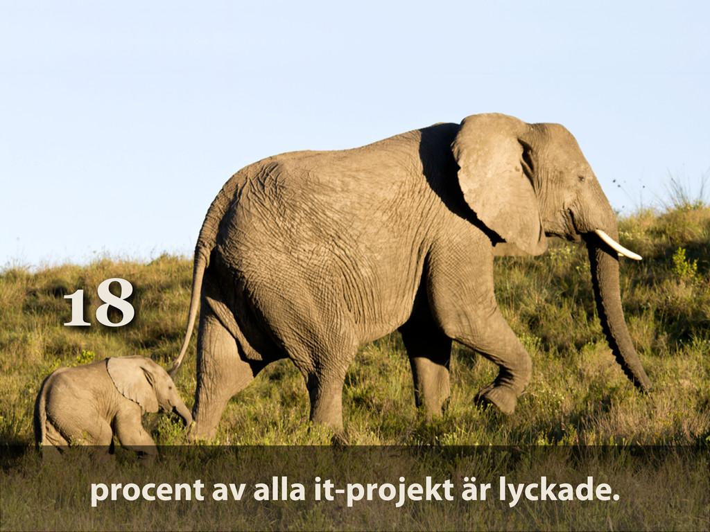 18 procent av alla it-projekt är lyckade.