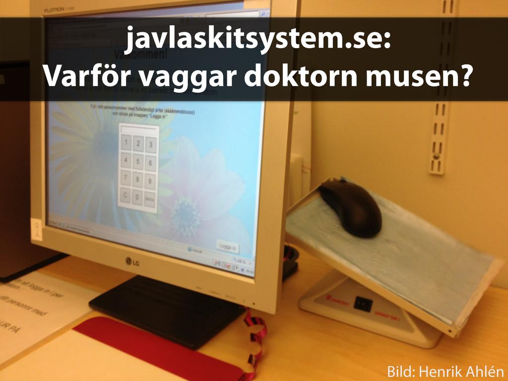 javlaskitsystem.se: Varför vaggar doktorn musen...