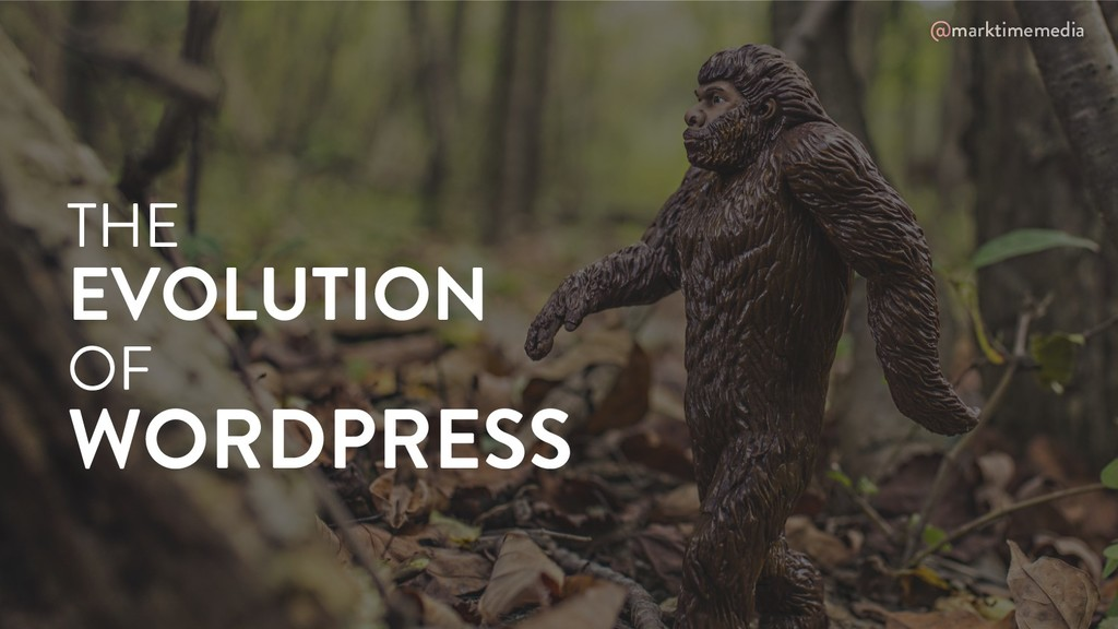 @marktimemedia THE EVOLUTION OF WORDPRESS