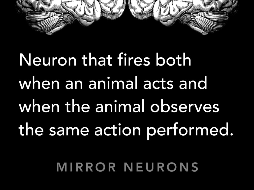 Neuron that fires both when an animal acts and ...