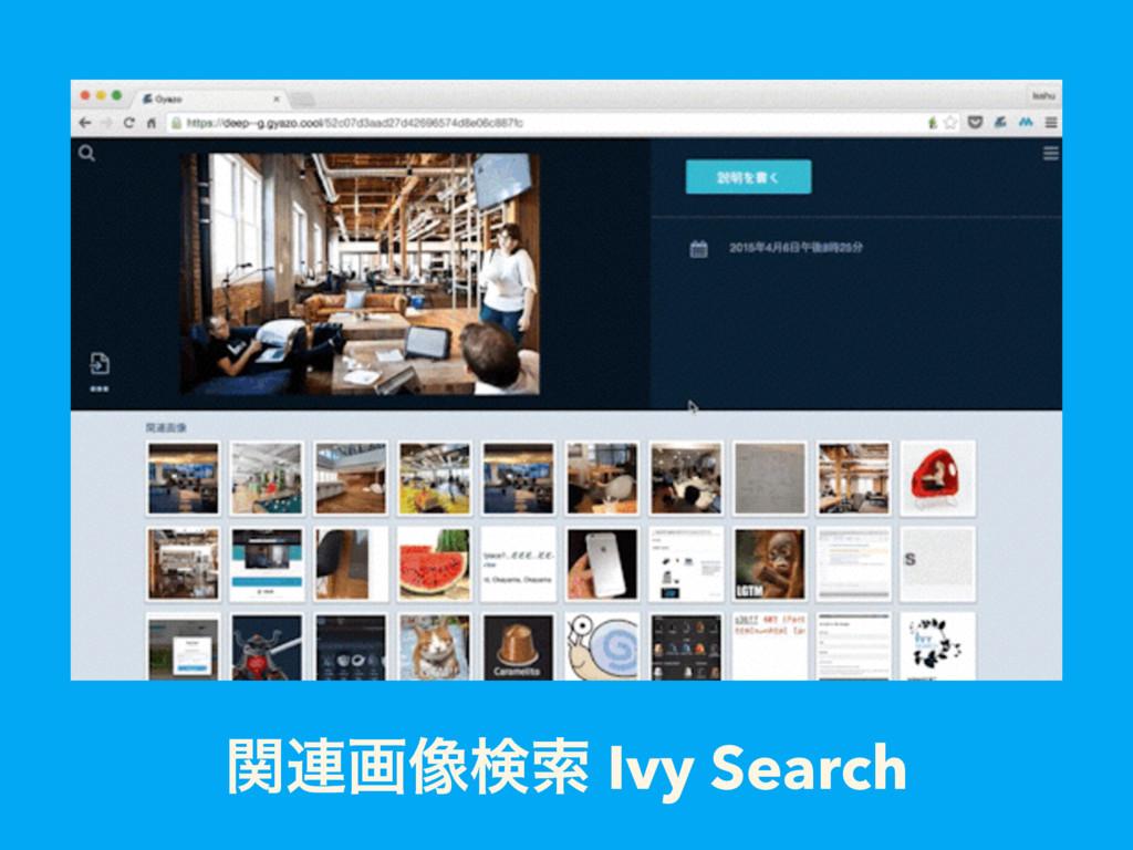 ؔ࿈ը૾ݕࡧ Ivy Search