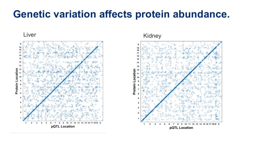 Genetic variation affects protein abundance. Li...