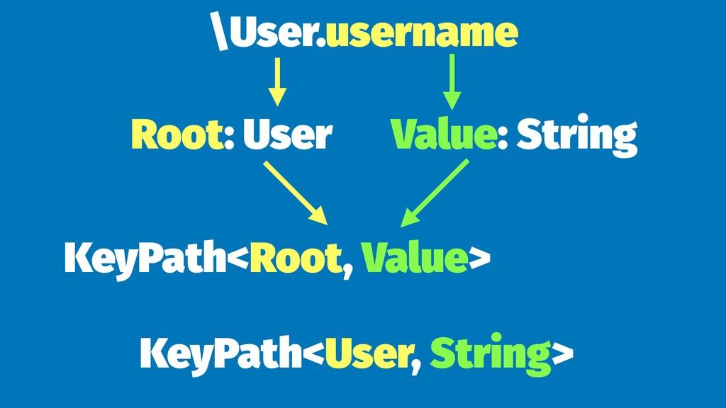 \User.username KeyPath<Root, Value> Root: User ...