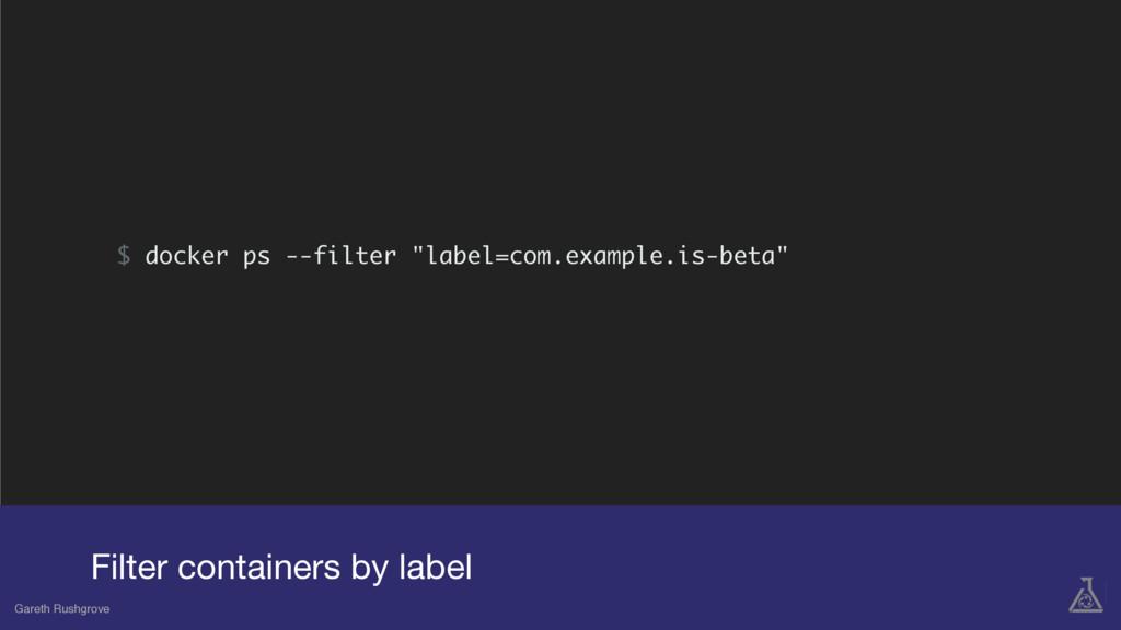 "$ docker ps --filter ""label=com.example.is-beta..."