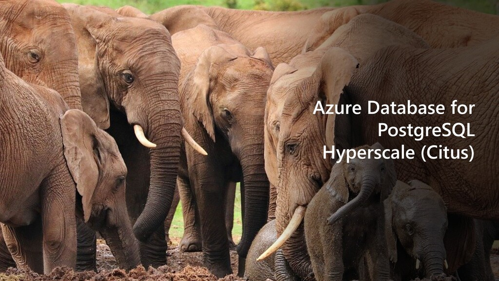 Azure Database for PostgreSQL Hyperscale (Citus)
