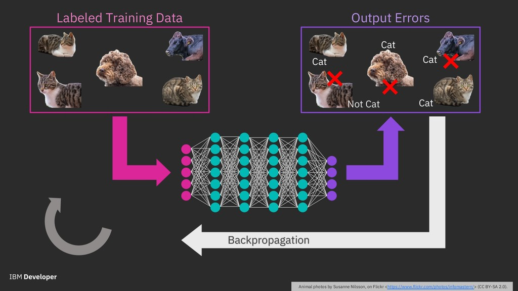 Labeled Training Data Backpropagation Animal ph...