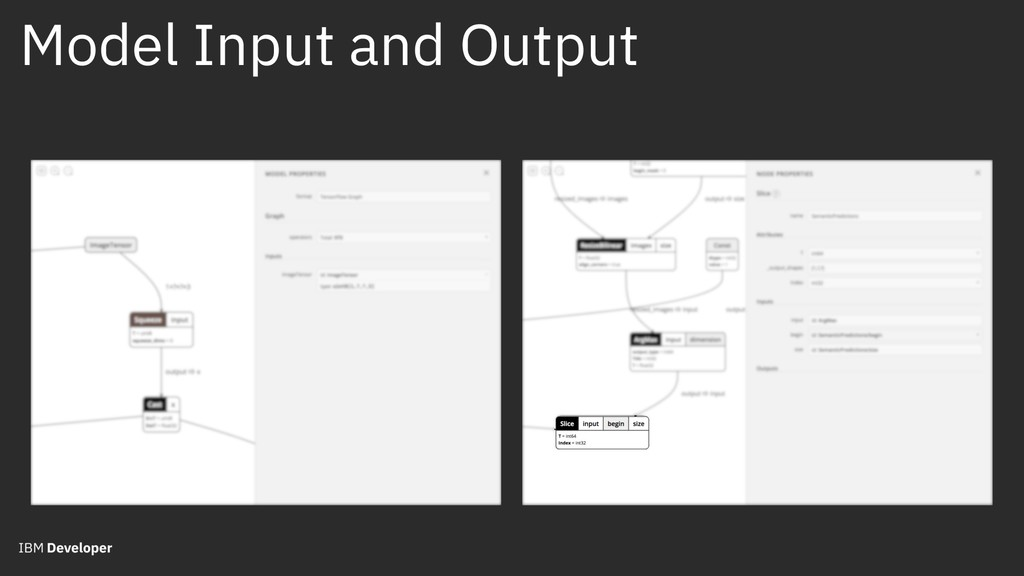 Model Input and Output