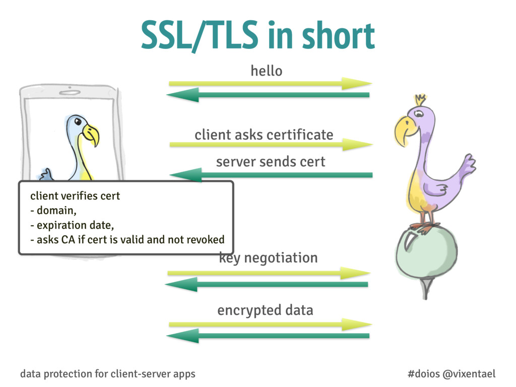 SSL/TLS in short data protection for client-ser...