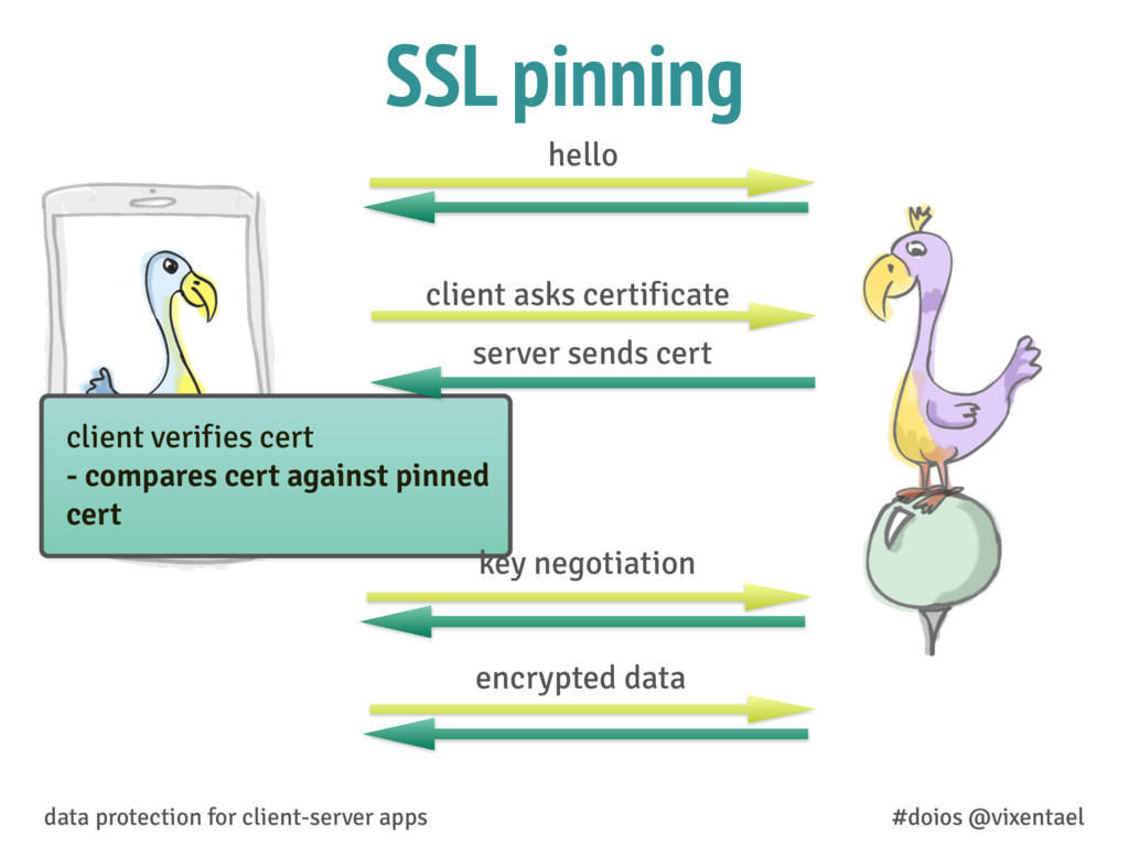 SSL pinning data protection for client-server a...