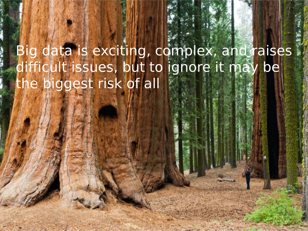 Big data is exciting, complex, and raises diffi...