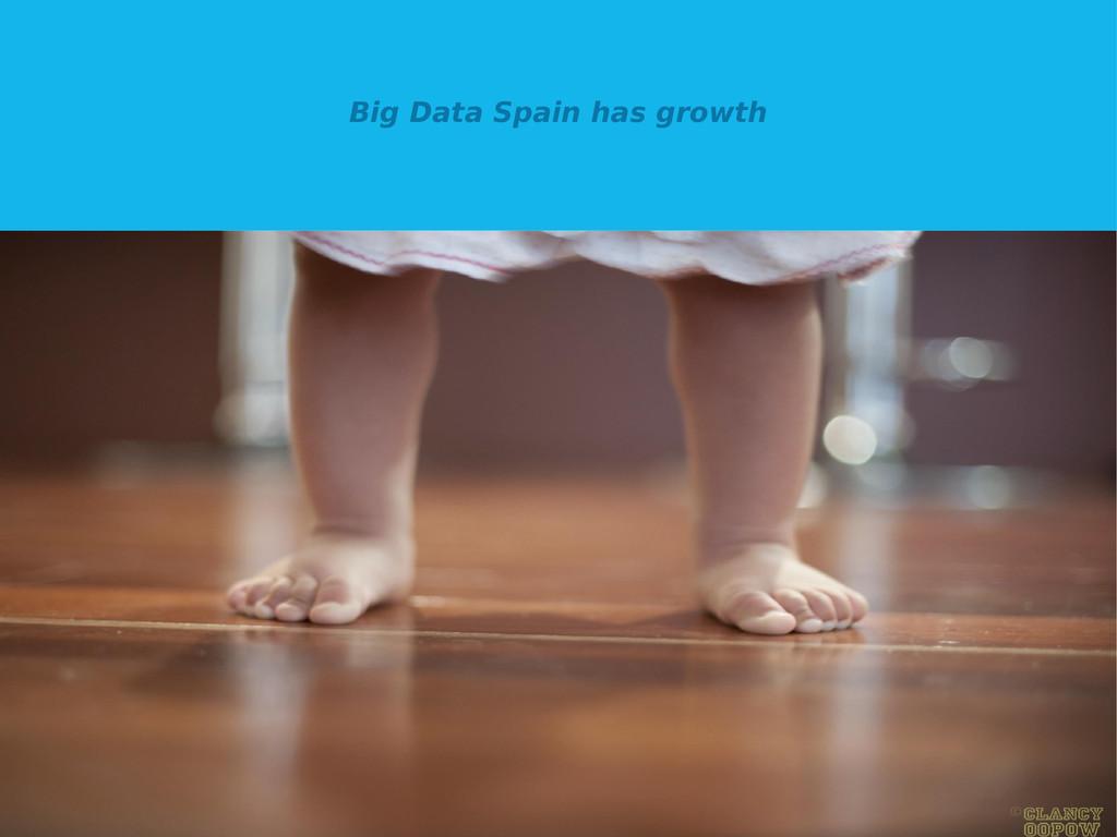 Big Data Spain has growth