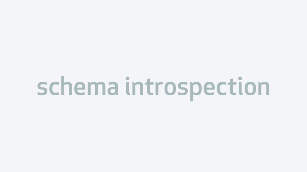 schema introspection
