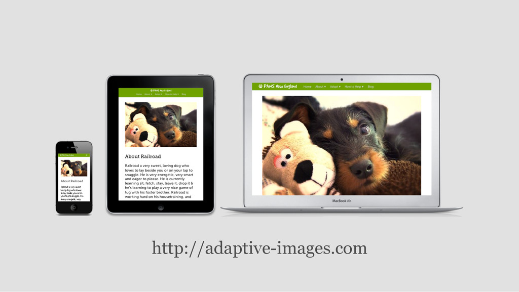 http://adaptive-images.com