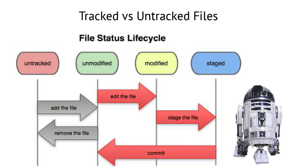 Tracked vs Untracked Files