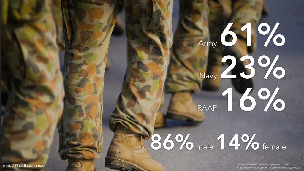 Army 61% Navy 23% RAAF 16% 86% male 14% female ...