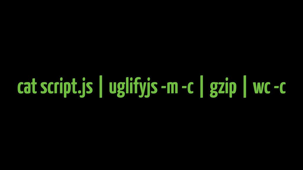 gzip wc -c uglifyjs -m -c cat script.js      
