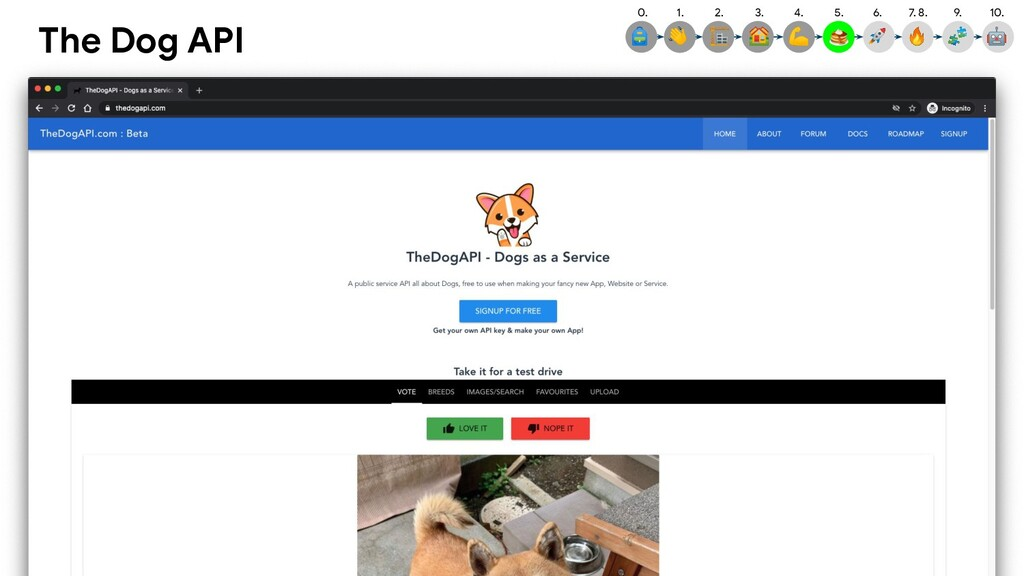 The Dog API 4.  5.  3.  2.  1.  0.  9.  10.  7....