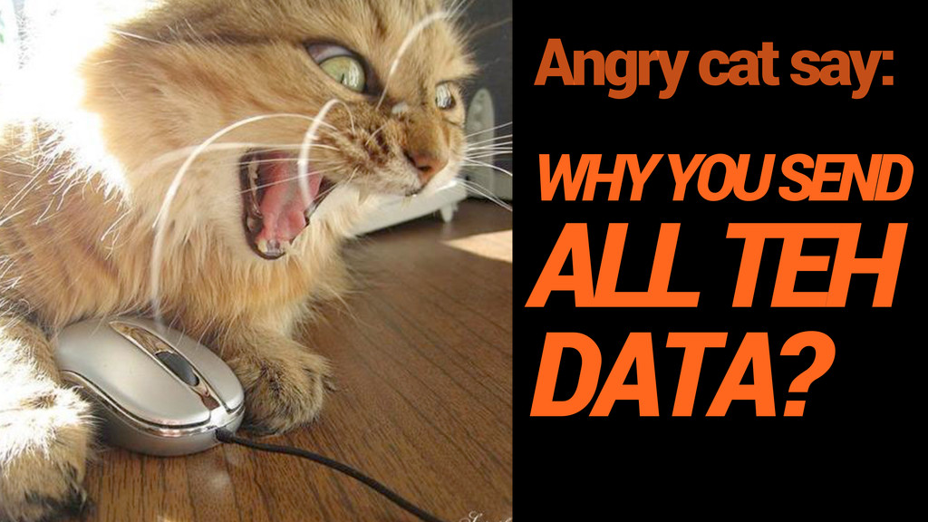 Angry cat say: WHY YOU SEND ALL TEH DATA?