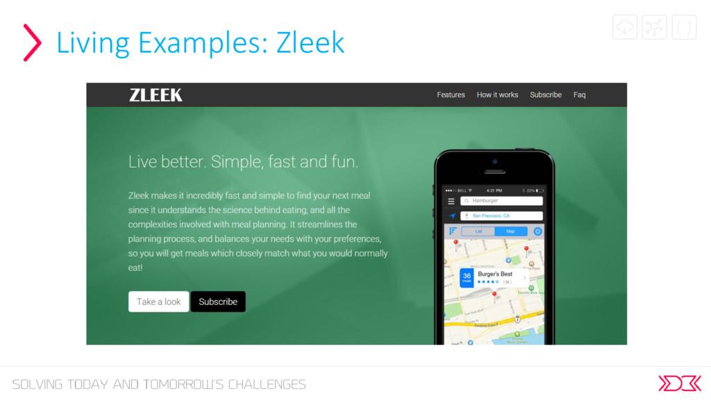 Living Examples: Zleek