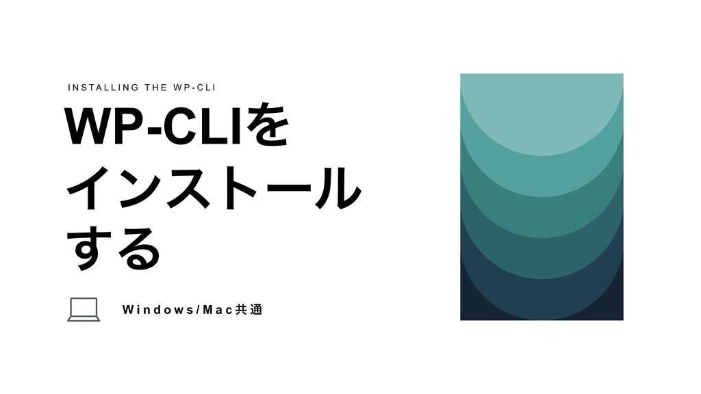 W i n d o w s / M a c ڞ ௨ WP-CLIΛ Πϯετʔϧ ͢Δ I N...