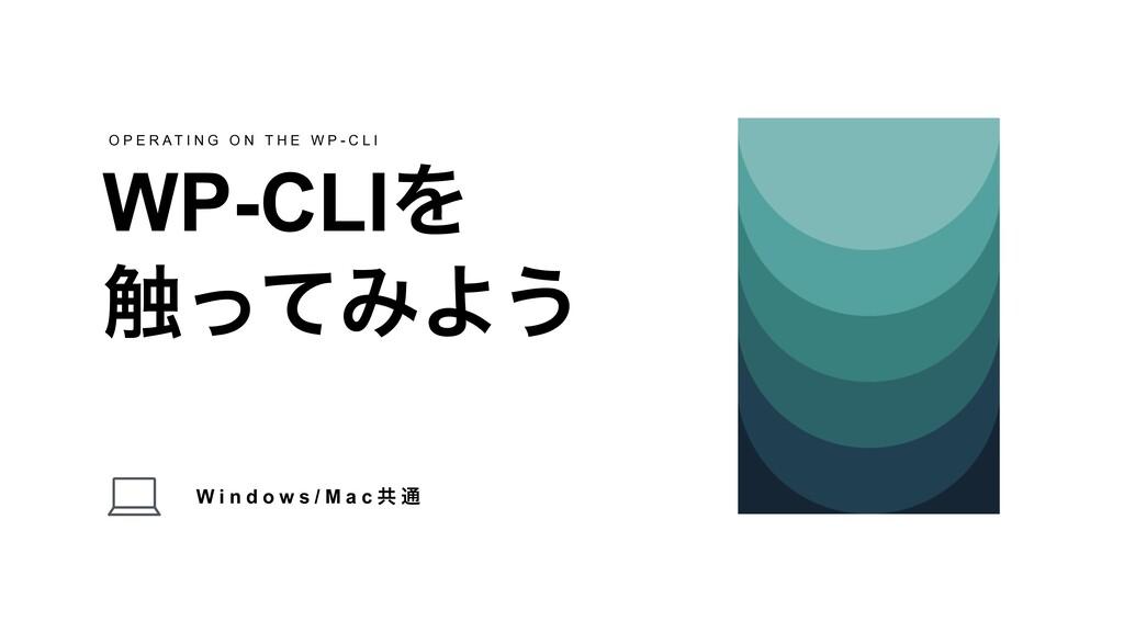 W i n d o w s / M a c ڞ ௨ WP-CLIΛ ৮ͬͯΈΑ͏ O P E ...