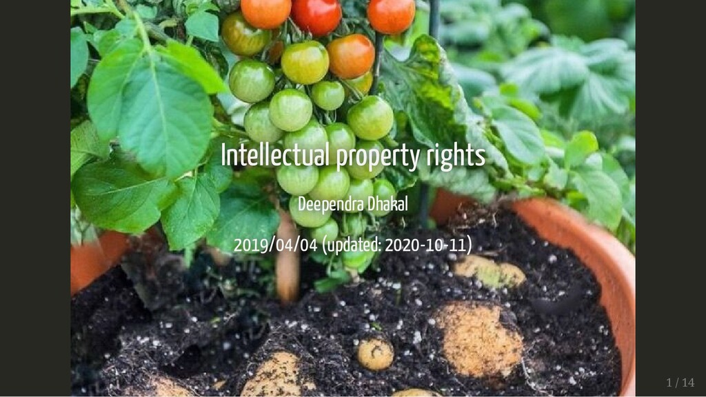 Intellectual property rights Intellectual prope...
